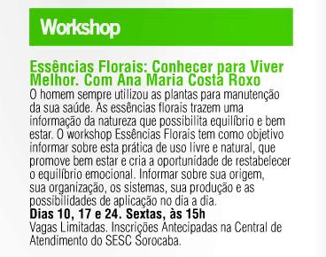 Workshop_Sorocaba
